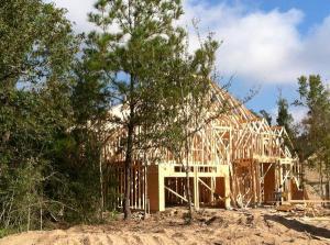 woodforest-building-activity*600